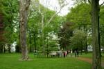 Garret D. Wall Park